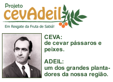 Projeto CevAdeil